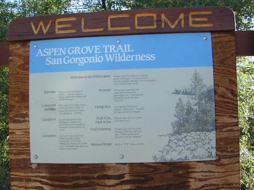 gorgonio aspen hike