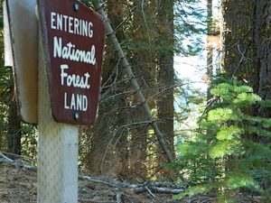 National Forest Land