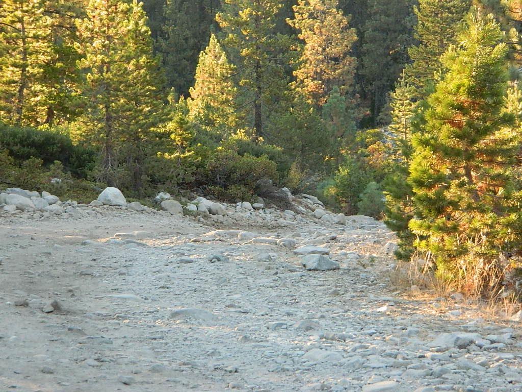 Canyon Creek Road