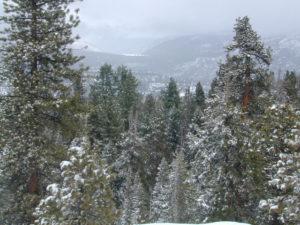Sierra Nevada Snow Views